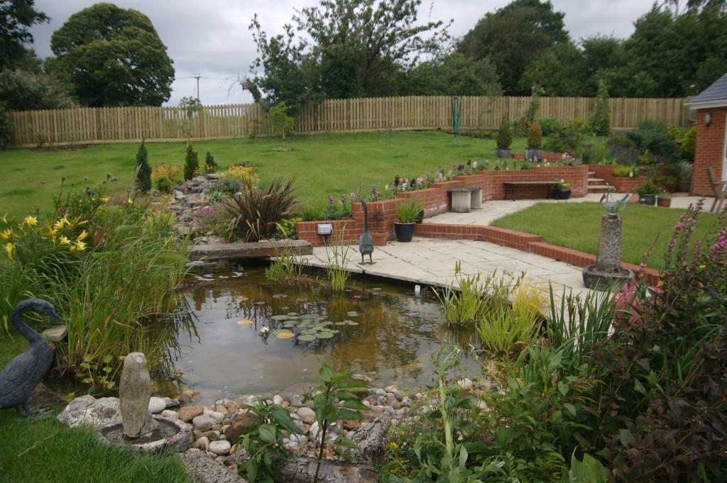 Pond terrace julia brigdale for Wildlife pond design uk